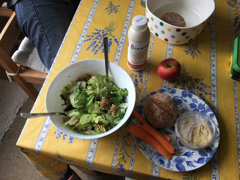vegan lunch eaten by vegan vet