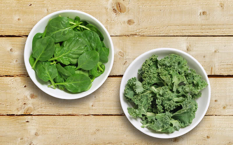 Supergreens Kale and Spinach vegan dog food