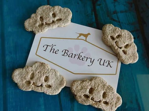 Calming bedtime dog biscuits