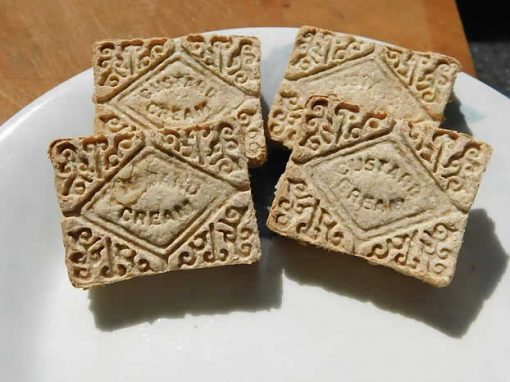 Custard creams for dogs