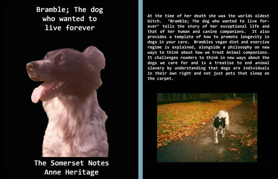 Bramble the dog who wanted to live forever - vegan dog