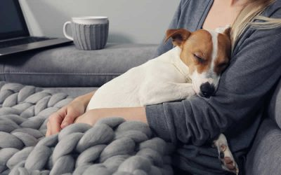 The kindest pet owner you can be