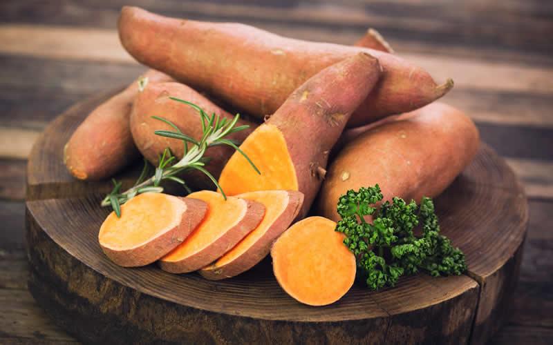 hypoallergenic sweet potato Vegan dogs