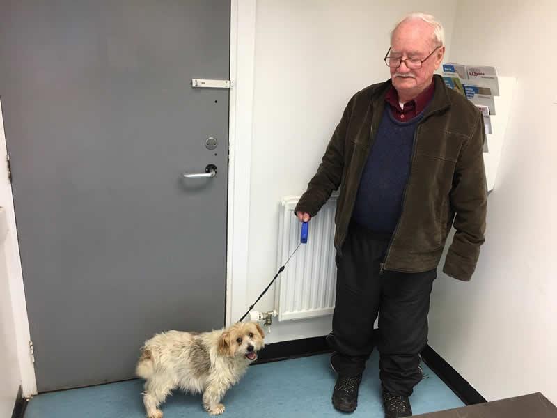 Dog and elderly owner in consult room of vegan vet