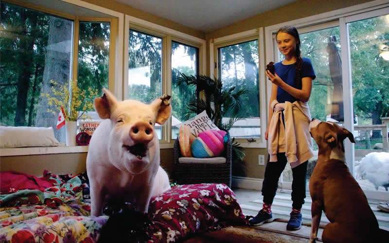 Esther the Wonder pig and Greta Thunberg