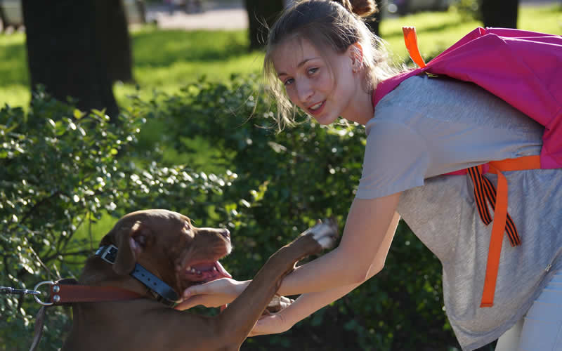 young girl hugging a dog organising a meet and treat of Umameo vegan dog treats