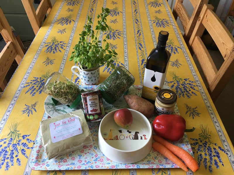 Ingredients for vegan vets supersprouts recipe made of sprouted lentils and alfalfa sprouts