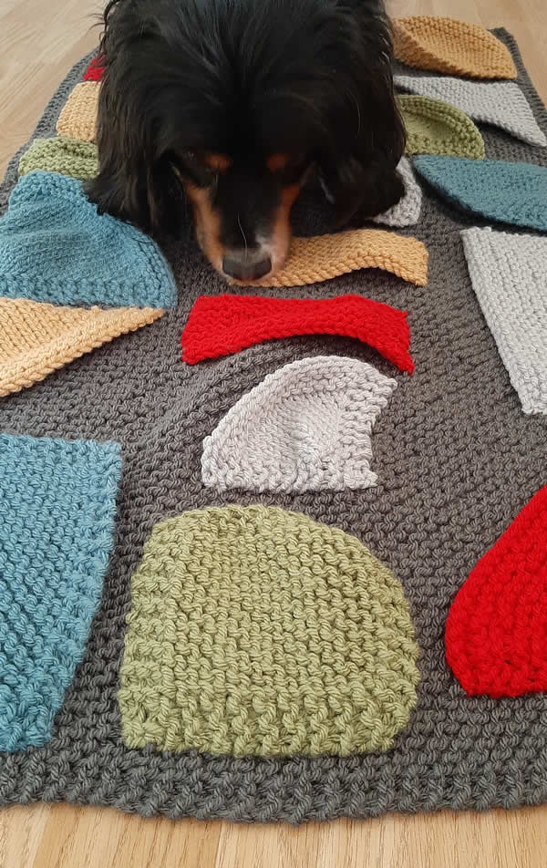 Snuffle blanket with Barney the Cavalier sniffing out plant-based dog treats