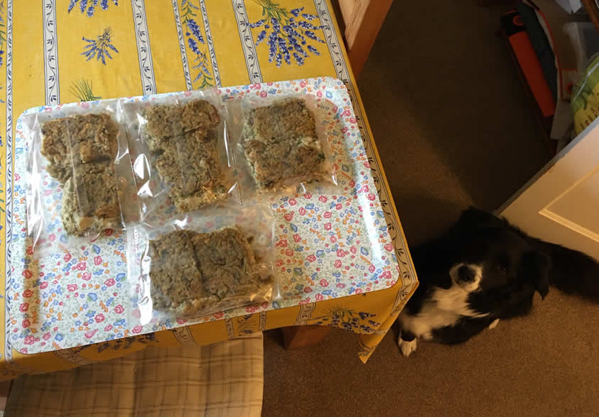 i-Veg feed the rainbow food packaged in biodegradable packaging for 3 days with Ruff vegan dog