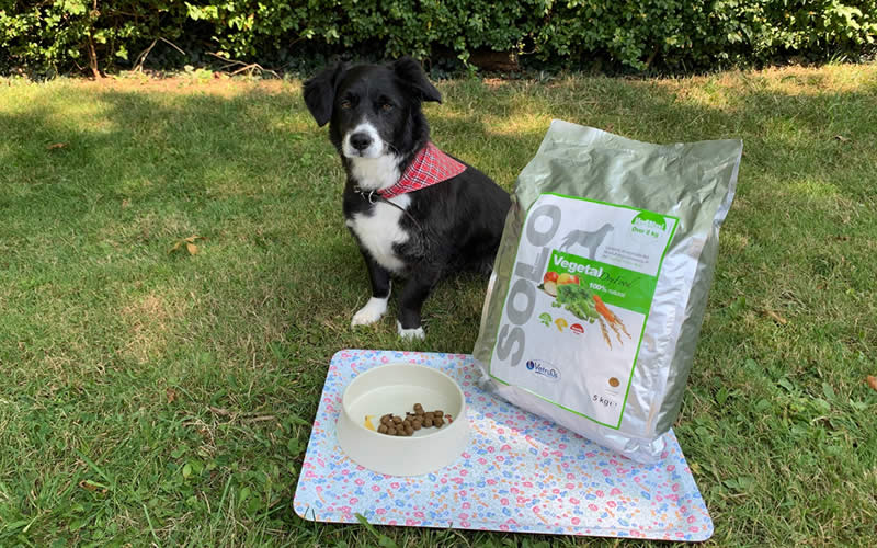 SOLO Vegetal dry food with vegan dog Ruff