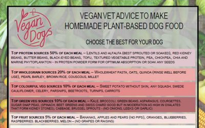 vegan dog food just be kind