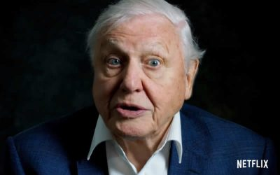 Wonderful David Attenborough