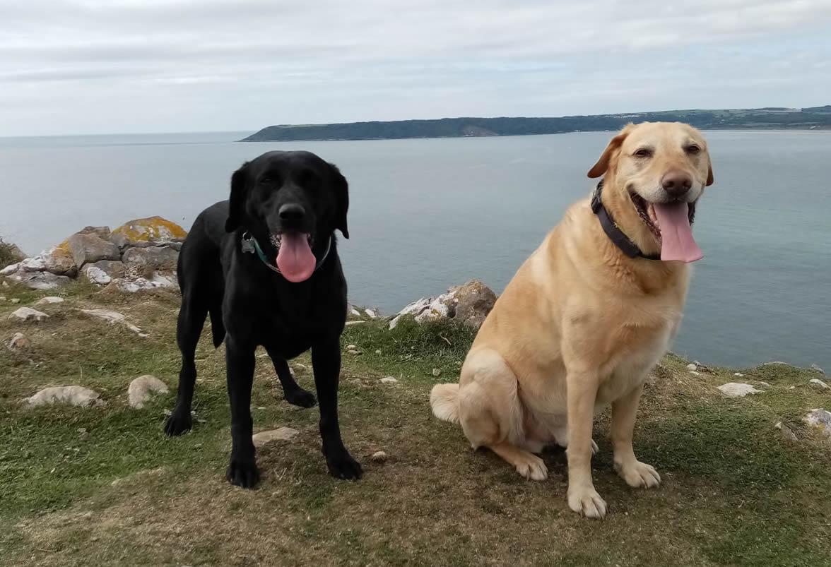 Cancer survivor Breta and her friend Roman