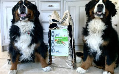 Bruno and Ruby are thrilled that we now sell 10kg Solo Vegetal!